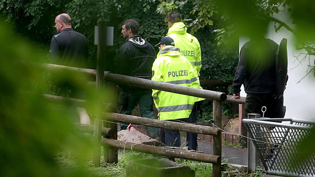 Mitarbeiter und Polizei konnten die Raubtiere, die aus dem Eifel-Zoo Tierpark Neu-Bierbach entkommen waren, wieder einfangen.