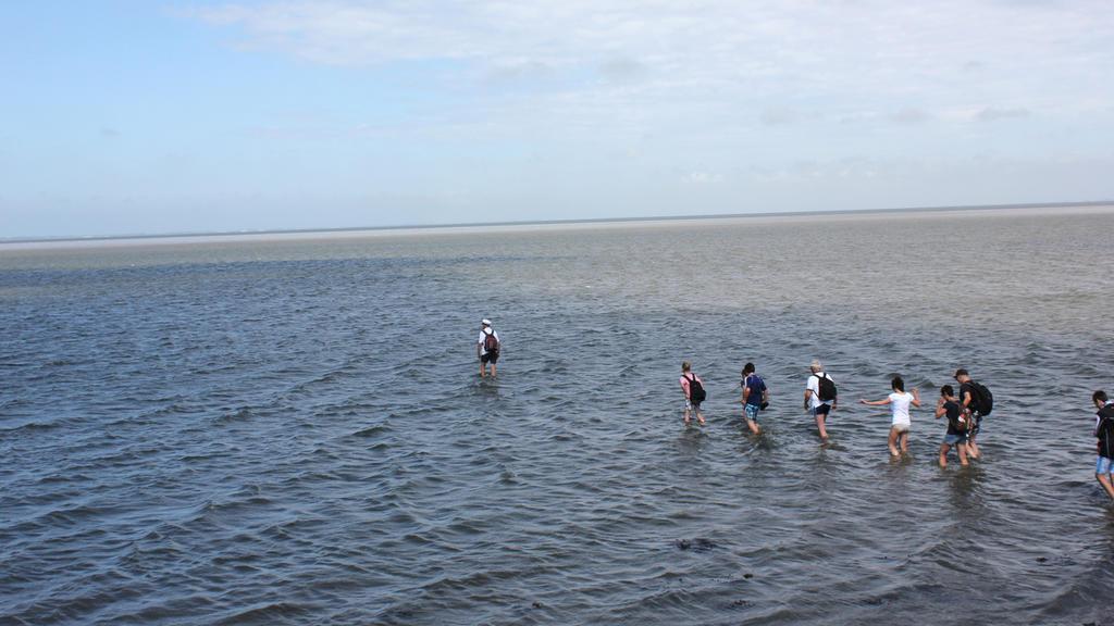 Im Wattenmeer sind besonders die Priele gefährlich für Wanderer. Auch durch Schlick und Treibsand droht Gefahr.