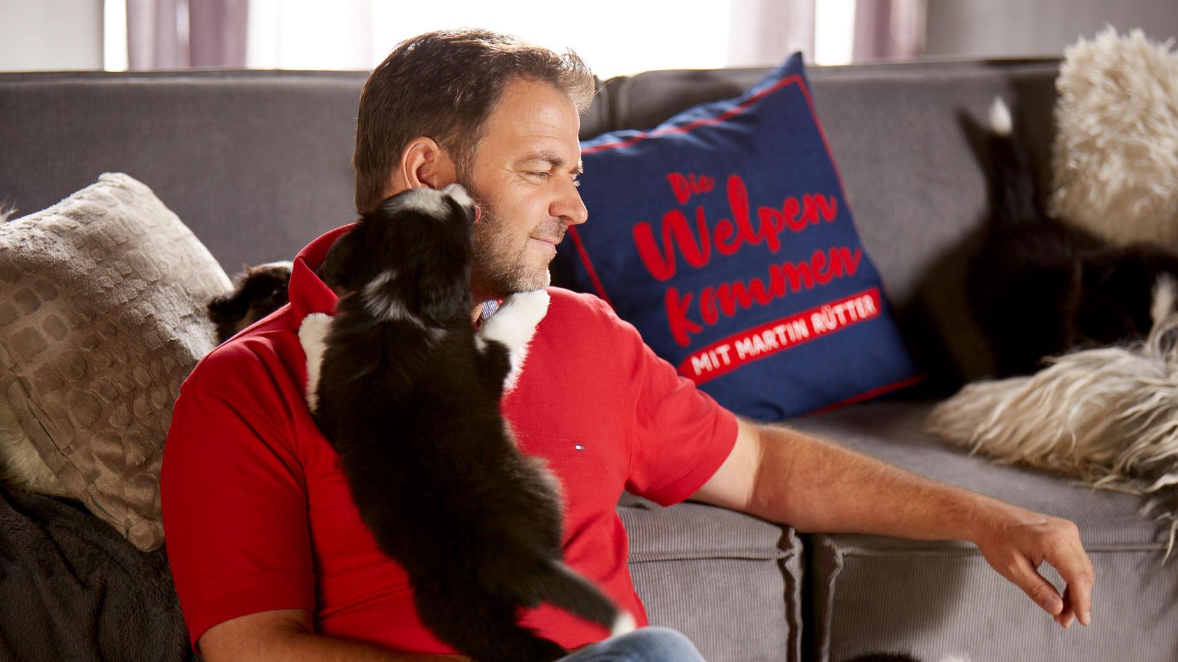 """In """"Martin Rütter – Die Welpen kommen""""  unterstützt Hundeprofi Martin Rütter Familien bei der Adoption eines Welpen."""