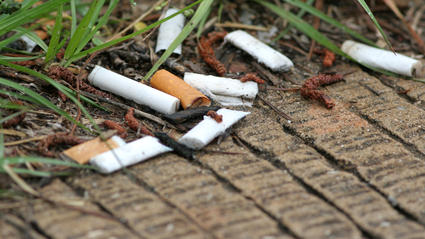 Zigarettenkippen sind ein großes Umweltproblem.