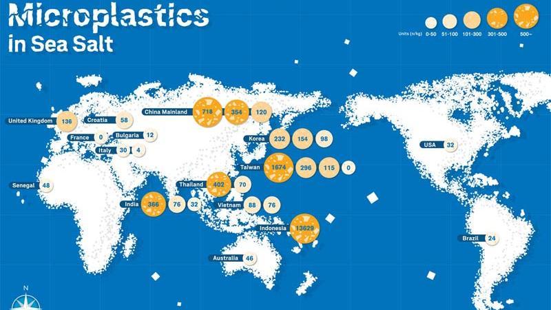 Mikroplastik In Meersalz