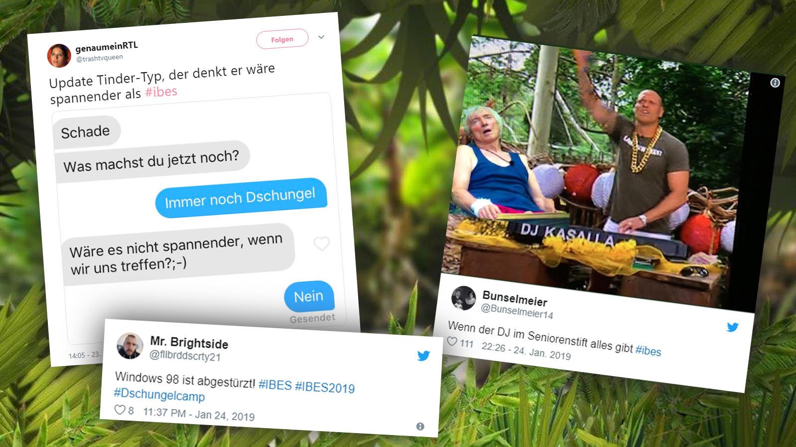 Die Twitter-Reaktionen zum 14. Tag im Dschungel.