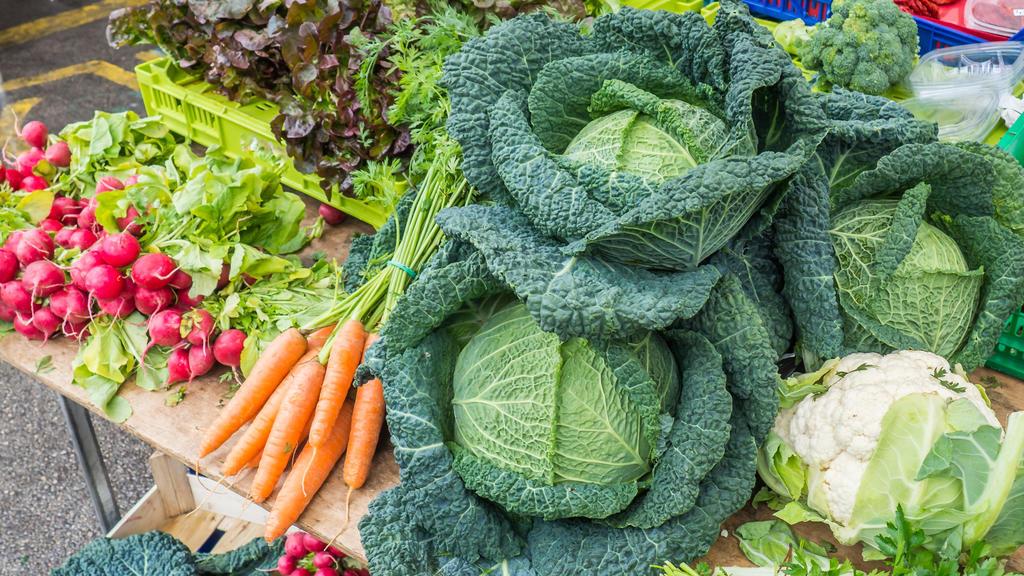 Gemüsesorten wie Radieschen, Möhren, Wirsing und Blumenkohl werden ab Juni geerntet.