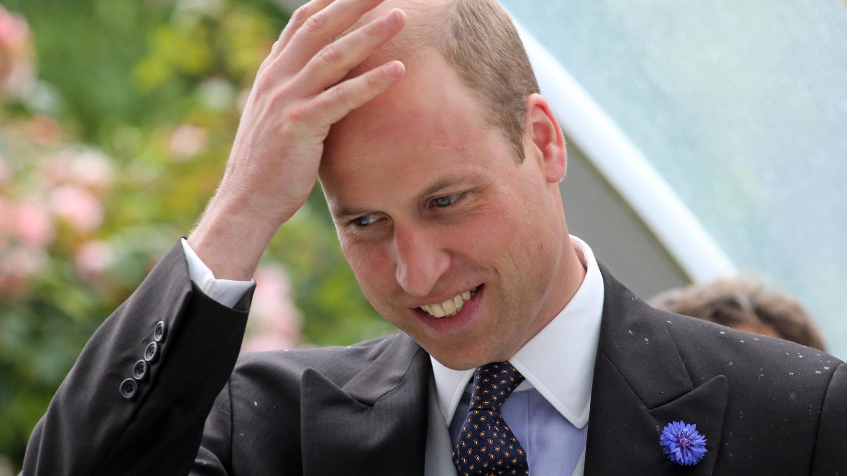 Prinz William wäre vor Jahren mal fast von einem Wachhund gebissen worden.