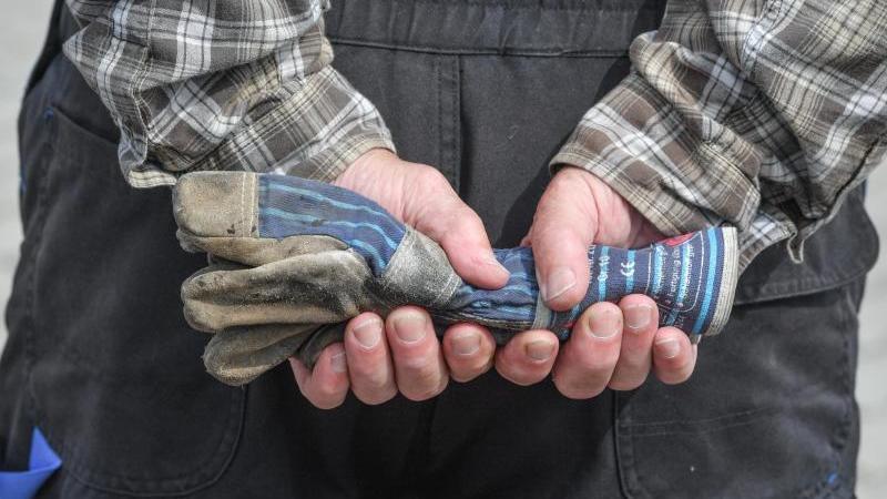 Ein Mann in Arbeitssachen hält Arbeitshandschuhe in seinen Händen. Foto: Patrick Pleul/Archiv