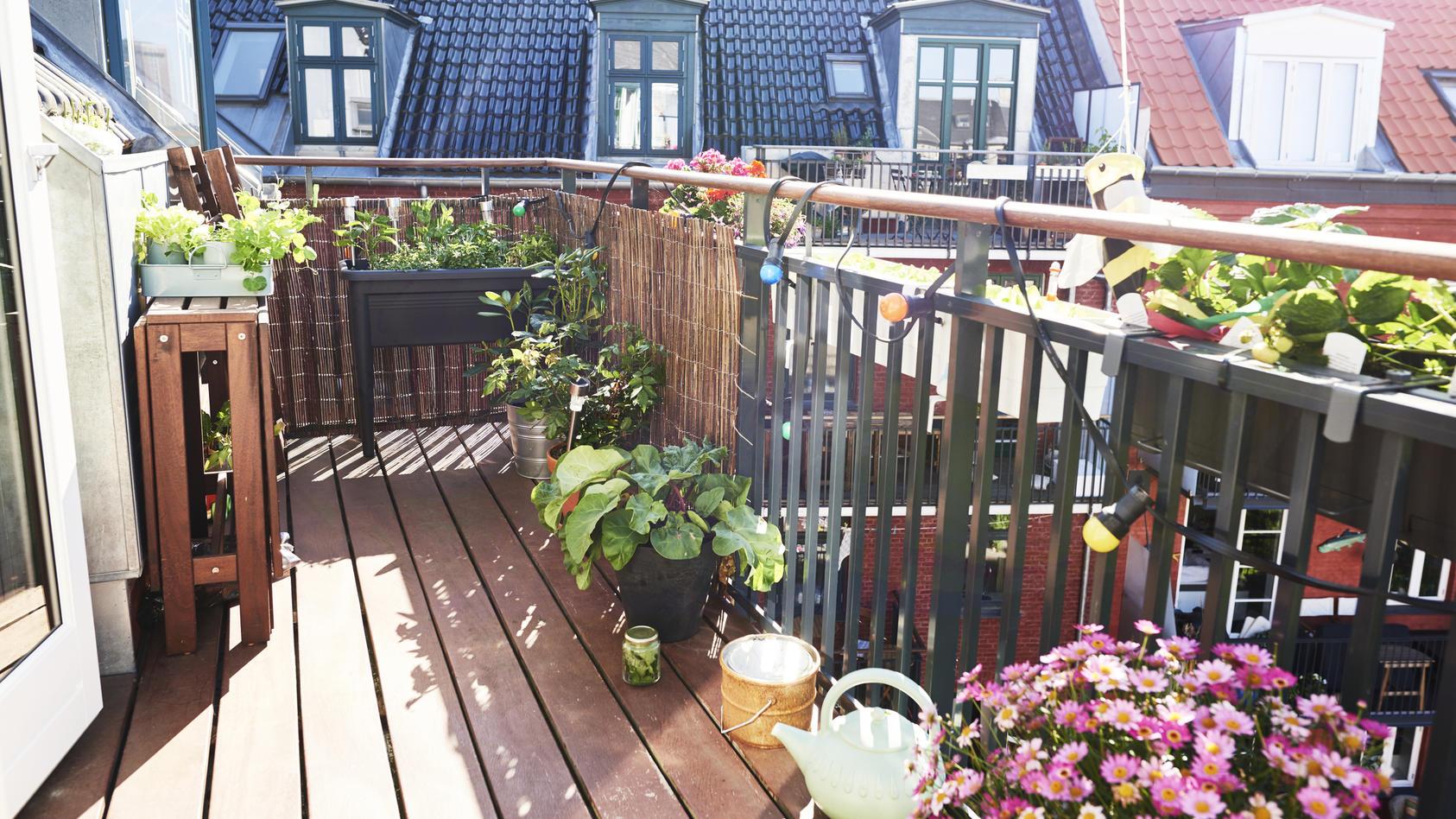 Besonders im Sommer kann ein Balkon zur kleinen eigenen Oase werden