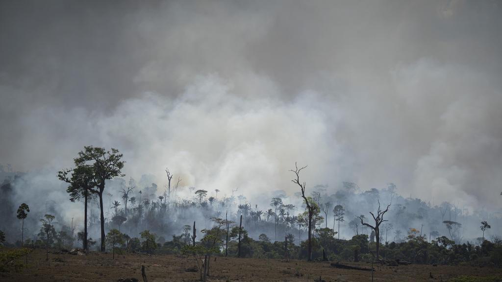 27.08.2019, Brasilien, Altamira: Rauch steigt aus dem Regenwald im Amazonas bei einem Brand. In Brasilien wüten die schwersten Waldbrände seit Jahren. Seit Januar stieg die Zahl der Feuer und Brandrodungen im größten Land Südamerikas im Vergleich zum