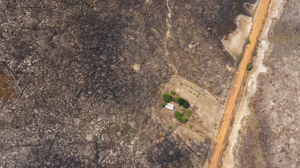 27.08.2019, Brasilien, Vila Nova Samuel: Ein Haus steht inmitten von einem von Waldbränden zerstörten Gebiet. In Südamerika wüten derzeit schwere Waldbrände. Vor allem Brasilien, Venezuela, Bolivien und Kolumbien sind von den Feuern betroffen. Foto: