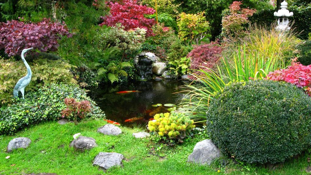 Ein Teich im Garten hat für das Klima und die Umwelt einige Benefits zu bieten.