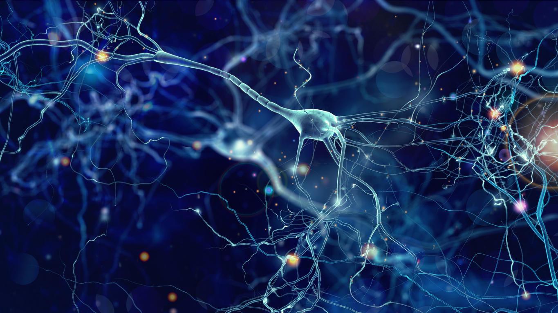 Neuronen sind winzig klein und leisten dennoch große Arbeit.