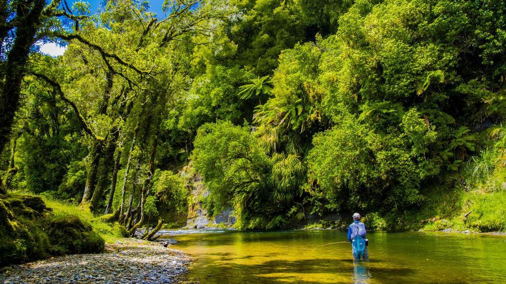 Awakino River in Neuseeland
