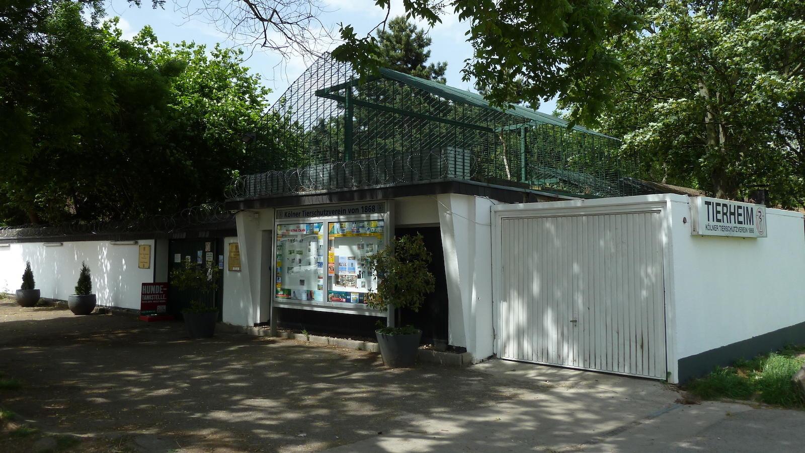 Leider hat der Arbeitsalltag im Tierheim Köln-Zollstock seine Schattenseiten.
