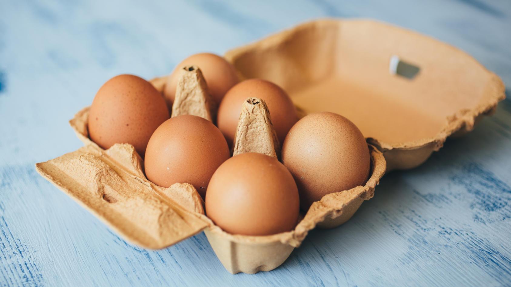 Eierkartons Wiederverwenden