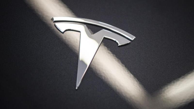 Das markante Logo von Tesla auf einer Motorhaube.