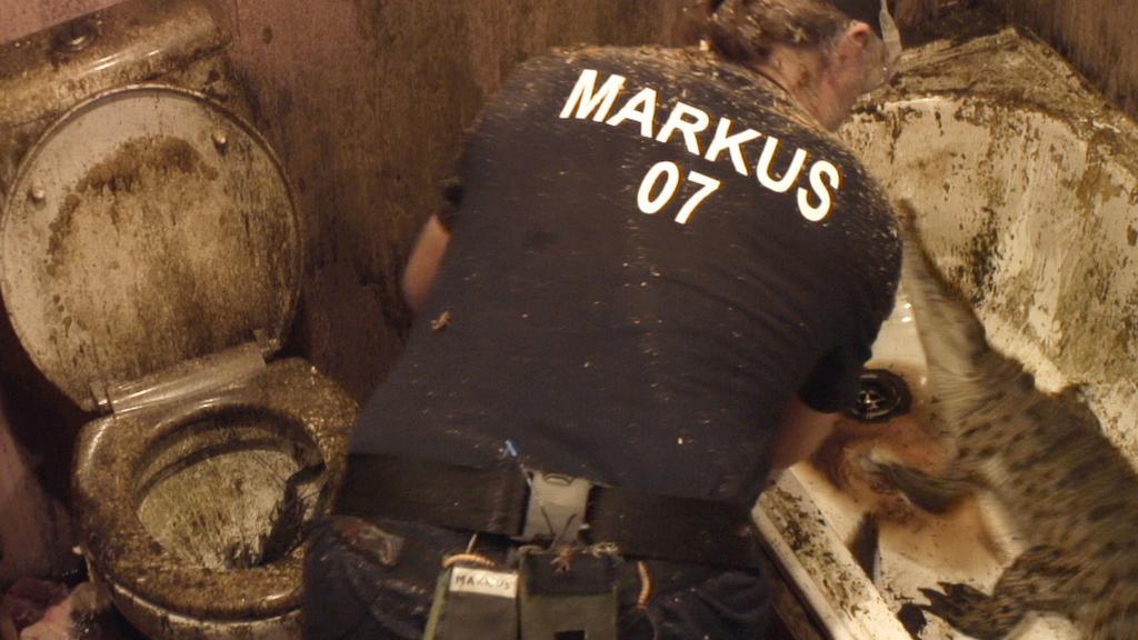 Dschungelcamp 2020: Dschungelprüfung Tag 9: Markus Reinecke