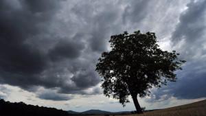 Das Wetter im Juli war vor allem durch wolkige Himmel und Regen geprägt.