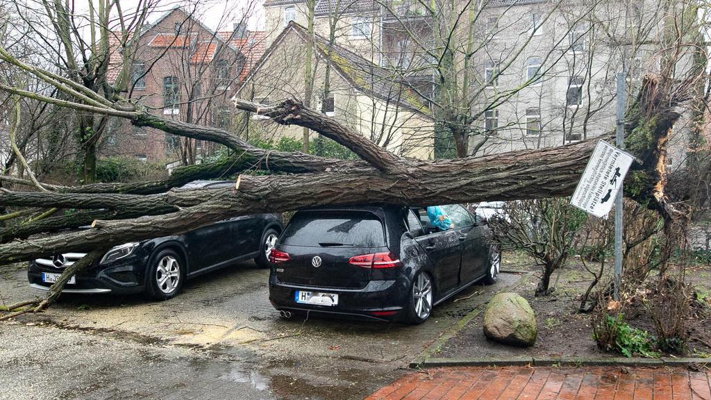 Der Monster-Orkan legte vom 9. bis zum 10. Februar 2020 Teile des öffentlichen Lebens in Deutschland lahm