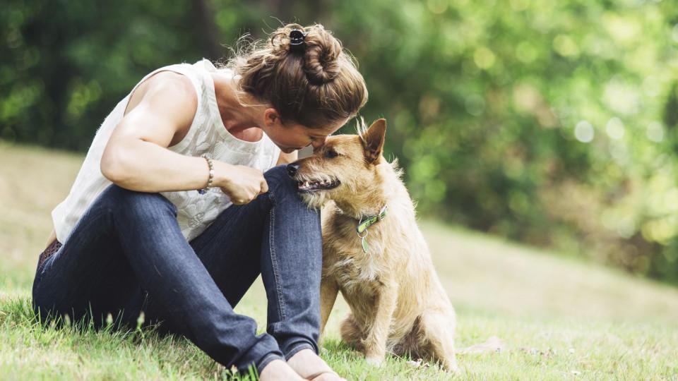 Viele Haustierhalter sind angesichts des Coronavirus verunsichert.
