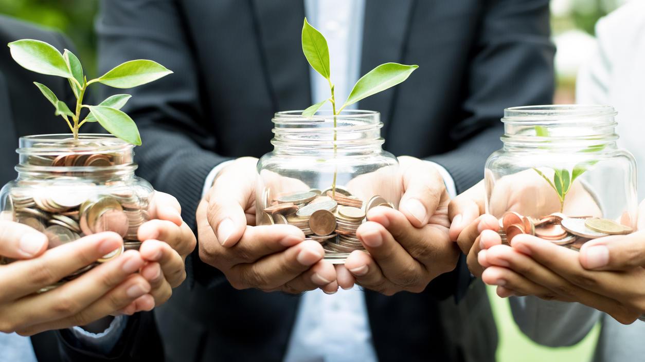 Grüne Geldanlageformen sind weltweit angesagt - auch weil damit ordentliche Renditen möglich sind