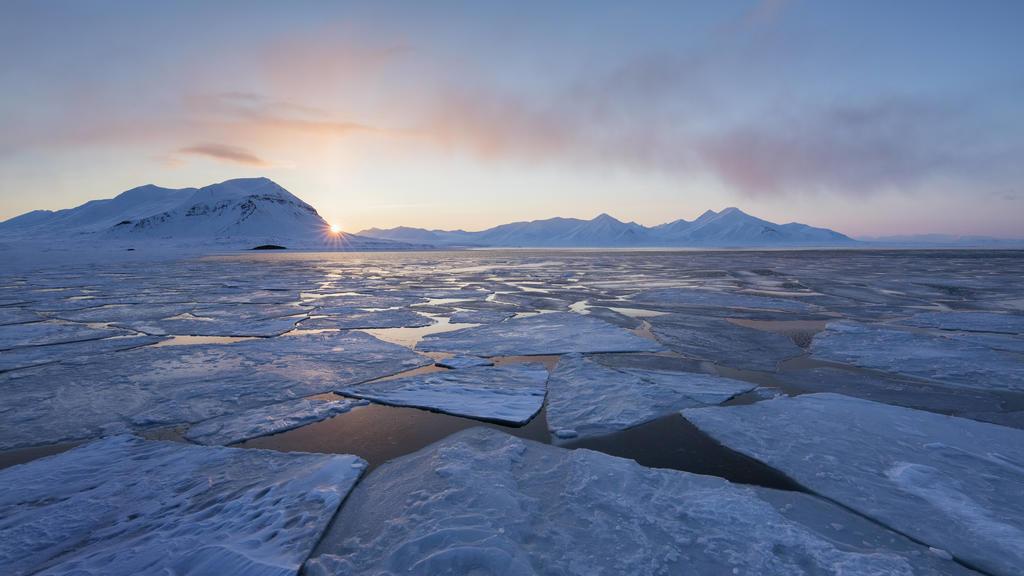 Die Arktis leidet enorm unter dem Schwund des Eises.