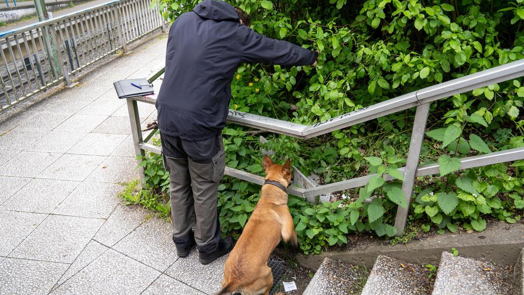 01.05.2020, Bielefeld: Ein Hundeführer der Polizei sucht mit seinem Suchhund in der Nähe eines Tatortes an der Stadtbahnhaltestelle Schelpmilser Weg im Stadtteil Baumheide, an dem am späten Donnerstagabend ein 17-Jähriger niedergestochen worden war,