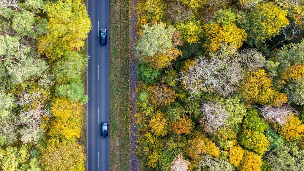ARCHIV - 17.10.2019, Brandenburg, Nuthetal: Zwei Autos fahren über die Landstraße L79 zwischen herbstlich gefärbten Bäumen (Luftaufnahme mit einer Drohne). (Zu dpa «CO2-Schlucker: Sind Bäume Klima-Retter?») Foto: Monika Skolimowska/dpa-Zentralbild/dp