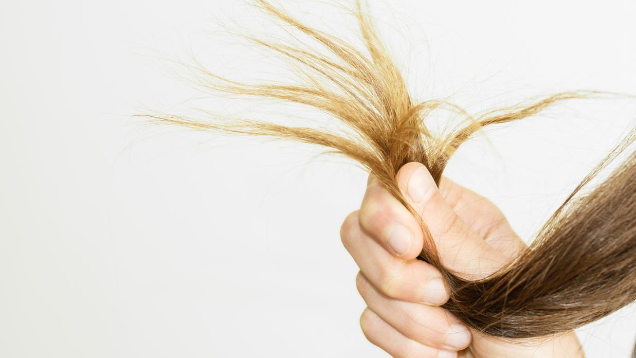 Haarbruch ist ein Problem, das viele Frauen kennen. Wir zeigen, was gegen abbrechende Haare hilft