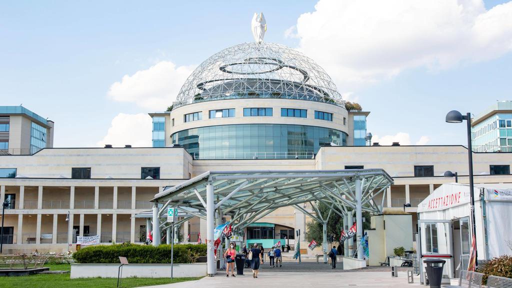 In diesem Mailänder Krankenhaus wird Flavio Briatore behandelt.