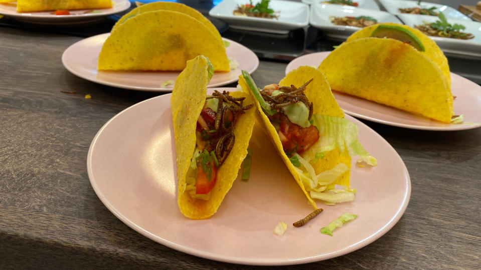 Tacos mit Mehlwürmern