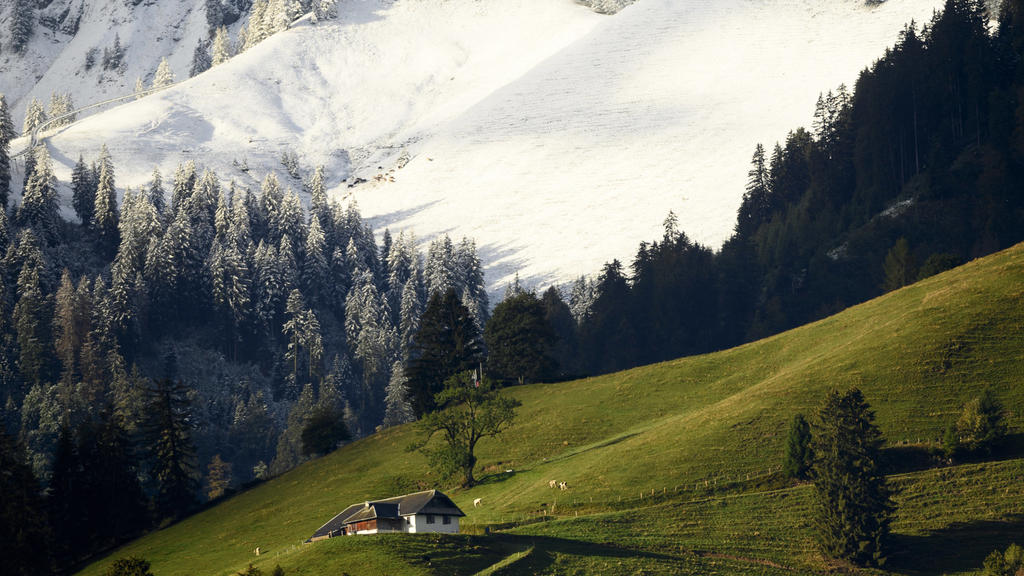 Schnee in der Schweiz: Auf den Hängen des Berges Moleson ist Neuschnee zu sehen.