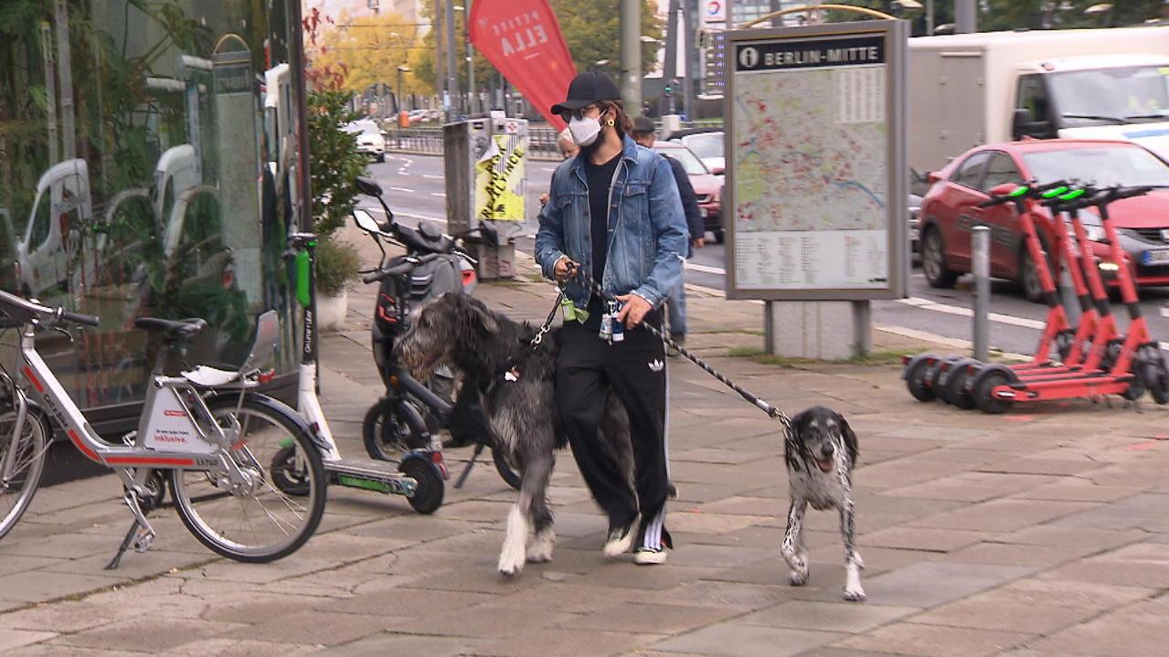 Therapiehund? Tom Kaulitz und Heidi Klum schummeln bei ihren Haustieren.