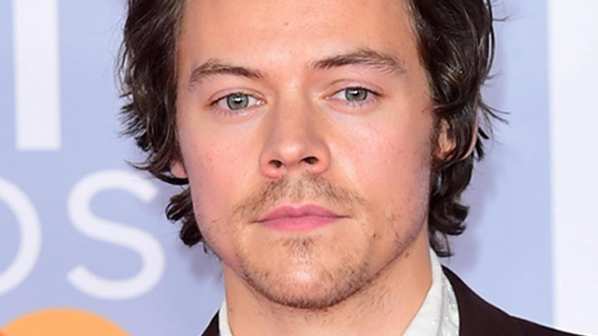 Sänger Harry Styles pfeift auf Gender-Konventionen.