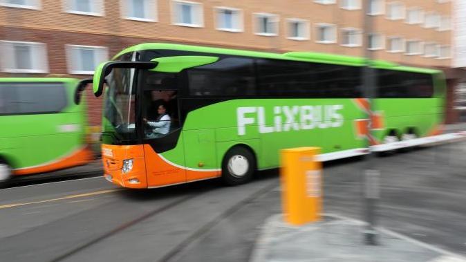 Busse von FlixBus fahren inFrankfurt. Foto: Lukas Görlach