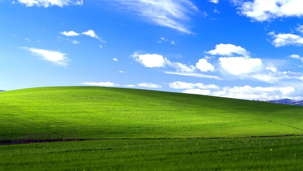 """Bliss"" ist das berühmteste Hintergrundbild der Welt"