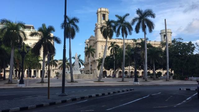 Straßenpromenade mit Palmen