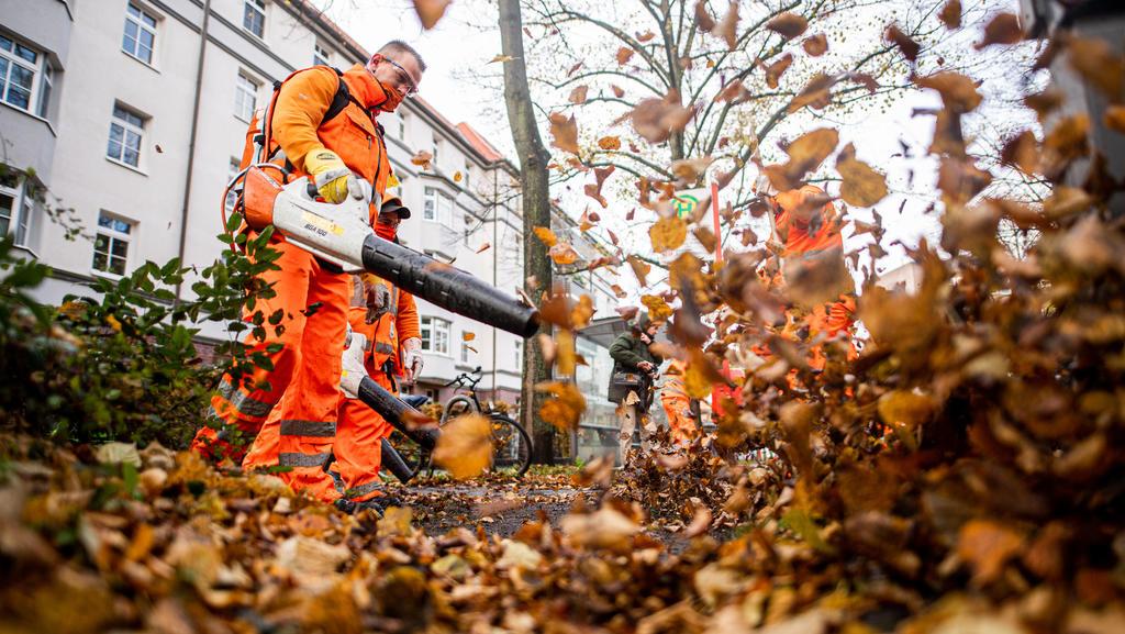 29.10.2020, Hamburg: Mitarbeiter der Hamburger Stadtreinigung beseitigen heruntergefallenes Laub. Foto: Daniel Reinhardt/dpa +++ dpa-Bildfunk +++