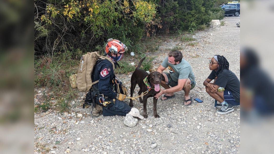 """Der Labrador namens """"Stout"""" überlebte einen Sturz von einer 21 Meter hohen Klippe."""
