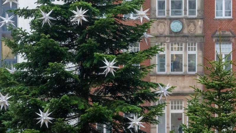 Herrnhuter Sterne hängen als Weihnachtsschmuck an einer Tanne in Lübecks Innenstadt. Foto: Markus Scholz/dpa/Archivbild