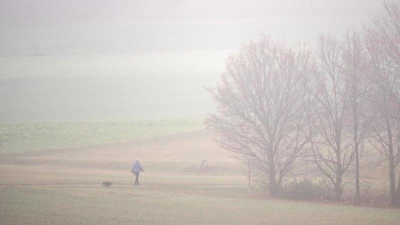 Eine Frau geht mit ihrem Hund im Nebel spazieren. Foto: Marijan Murat/dpa/Symbolbild