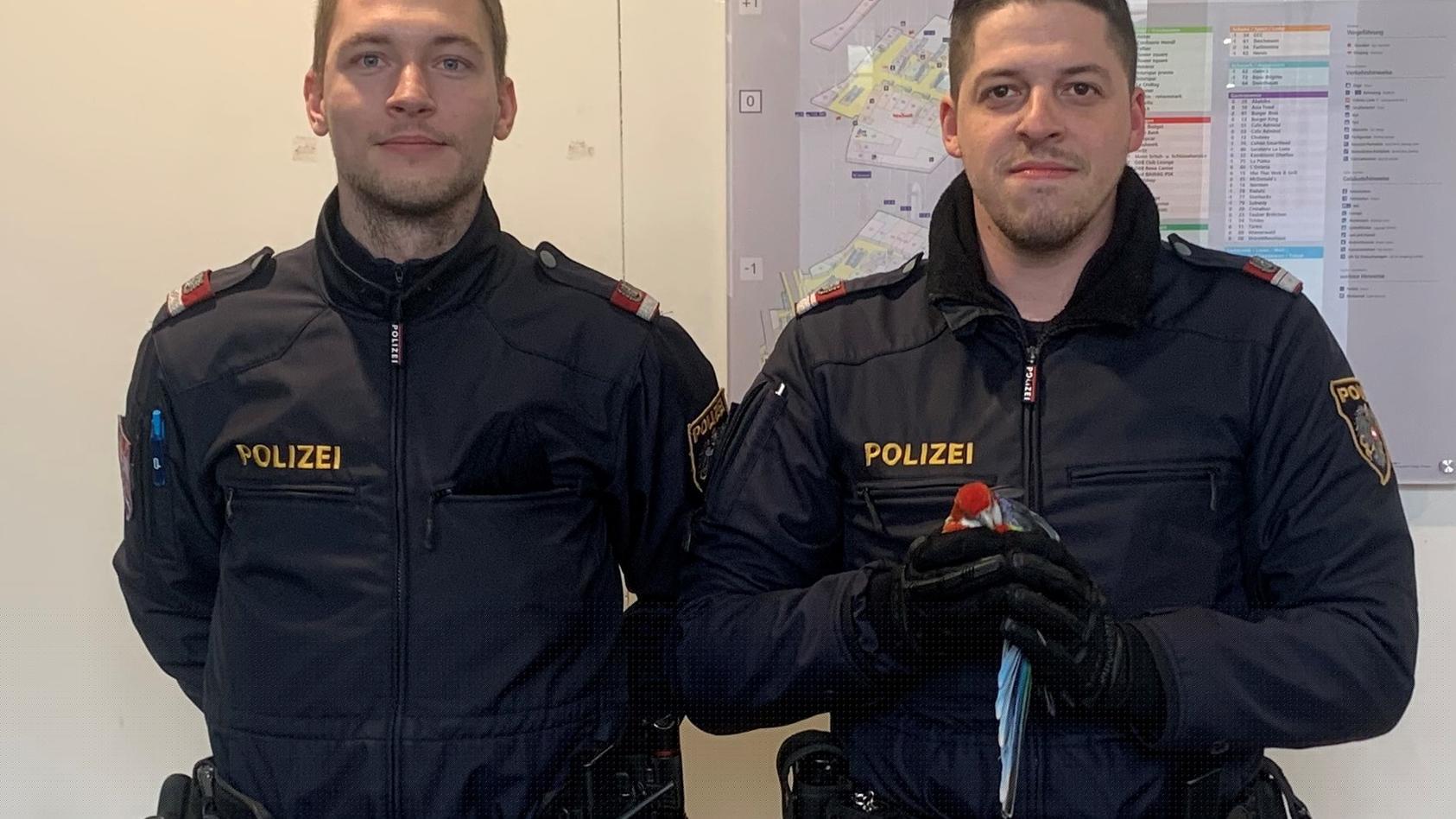 Hatten Erfolg als Vogelfänger: Zwei Polizisten retteten  einen Papagei am Wiener Hauptbahnhof