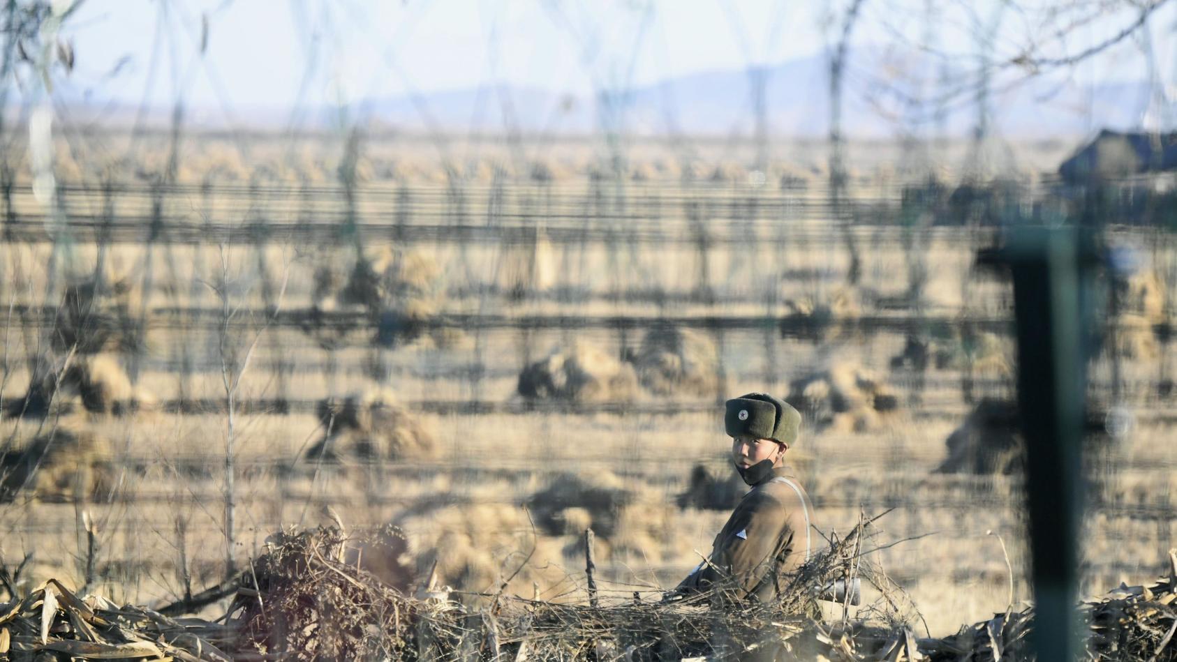 Mit einem Sprung über den drei Meter hohen Grenzzaun soll einem nordkoreanischen Ex-Turner die Flucht in den Süden geglückt sein.