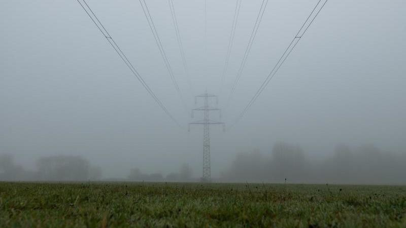 Hochspannungs-Freileitungen sind im Nebel zu sehen. Foto: Silas Stein/dpa/Symbolbild