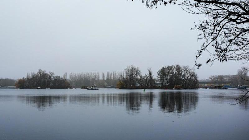 Bei trübem, nebligem Wetter spiegeln sich Bäume in der Spree. Foto: Jens Kalaene/dpa-Zentralbild/ZB