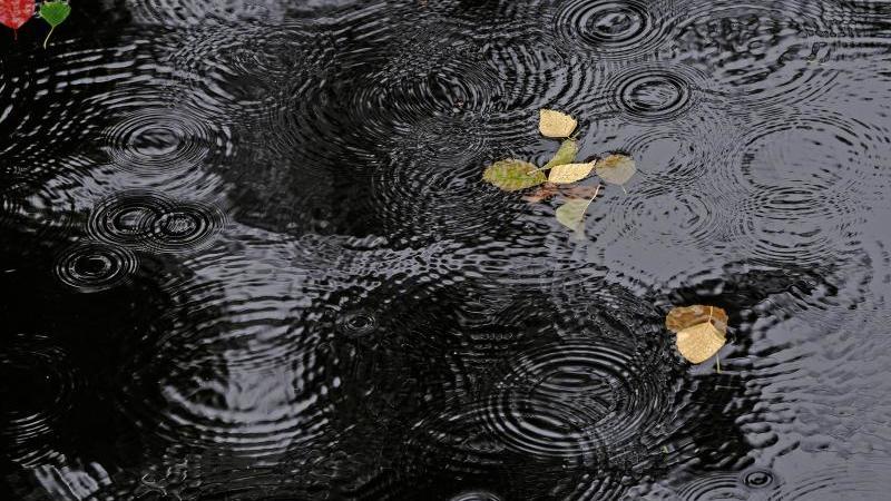 Regentropfen auf einem See. Foto: Paul Zinken/dpa/Symbolbild/Archiv