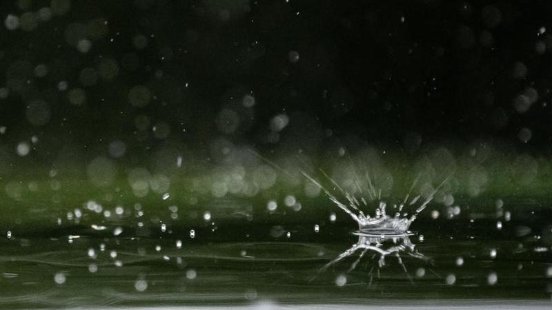Regentropfen fallen auf ein Autodach. Foto: Sebastian Gollnow/dpa/Archivbild