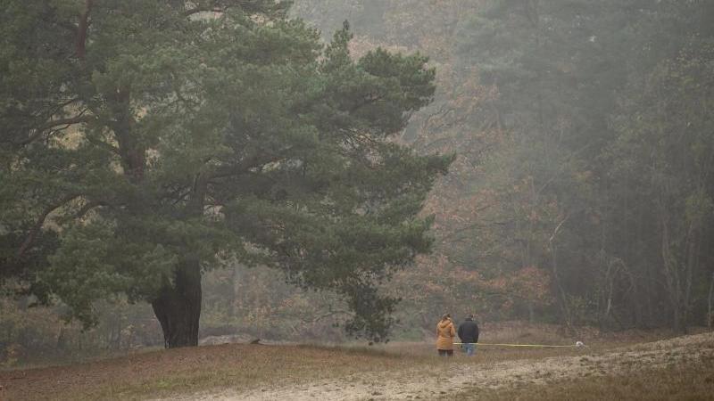 Spaziergänger laufen bei trübem Wetter durch einen Park. Foto: Sina Schuldt/dpa/Symbolbild