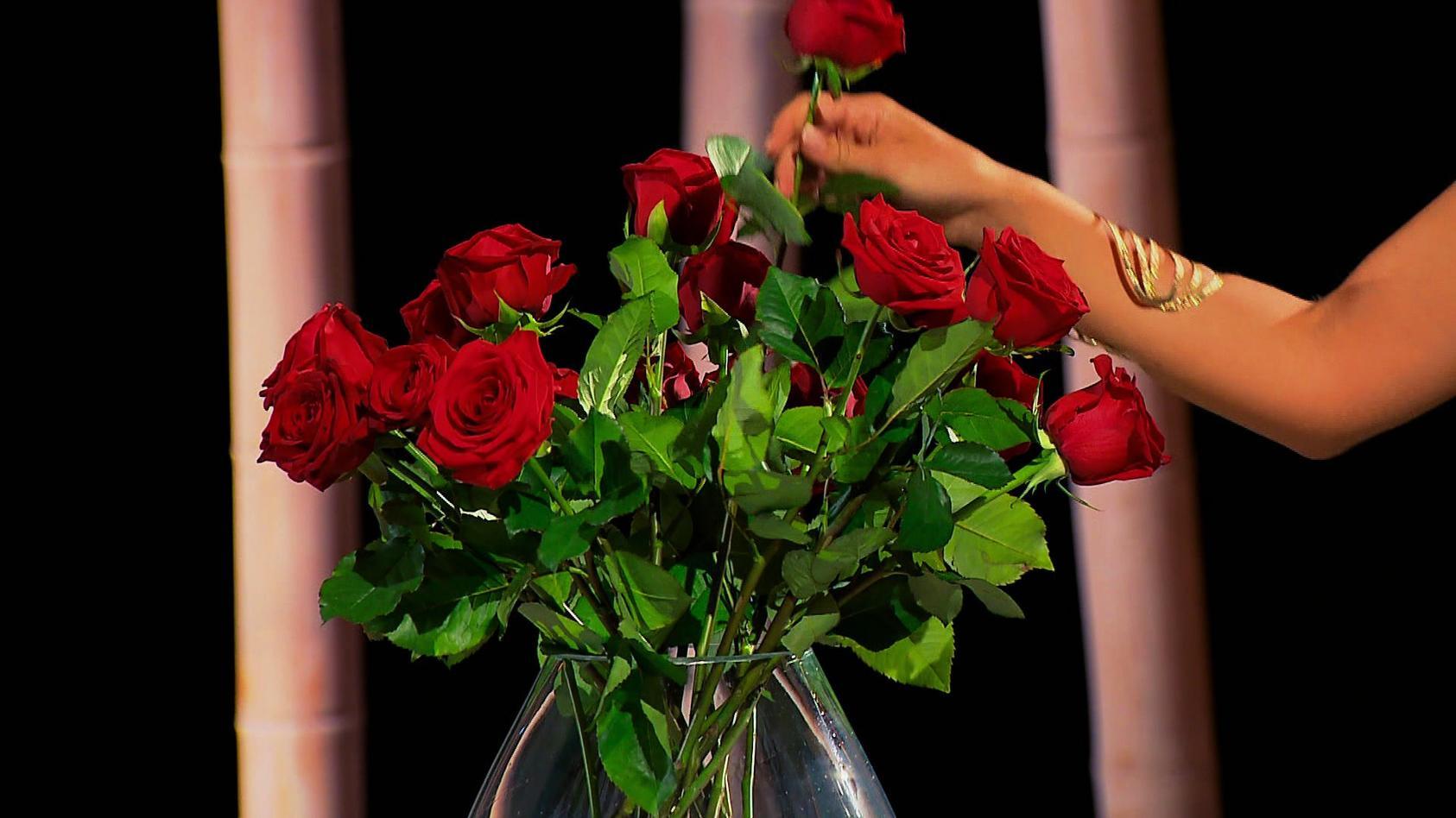 Auch 2021 verteilt eine neue Bachelorette bei RTL Rosen.