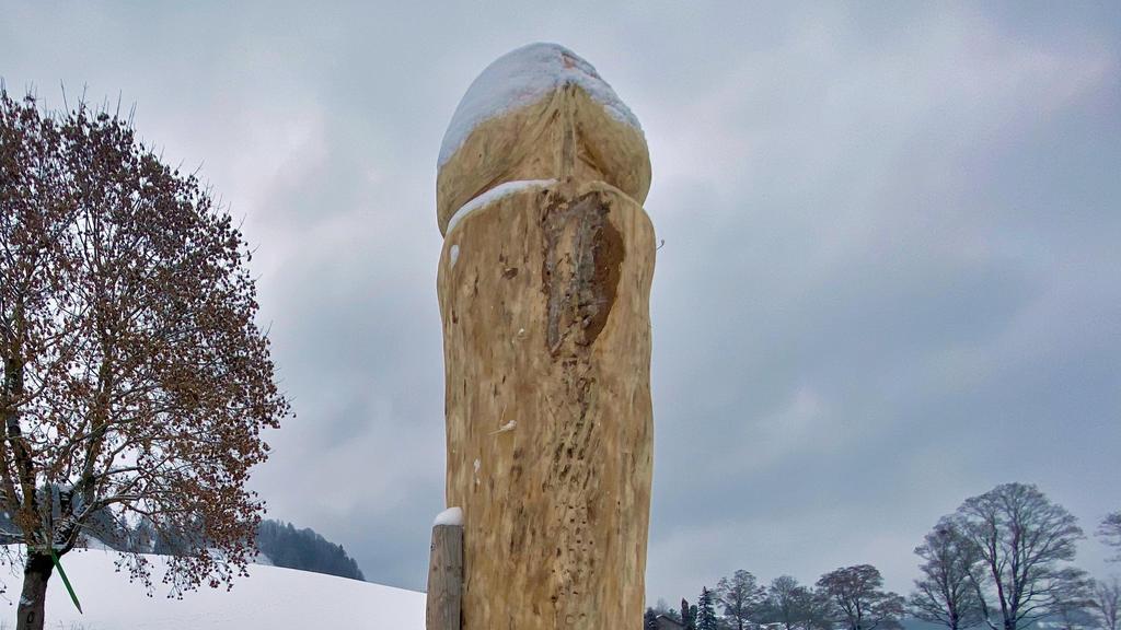 06.01.2021, Bayern, Ebratshofen: Schon wieder ein HolzpenisimAllgäu:Wer die Skulptur aufgestellt hat, war nach Angaben der Polizei zunächst unklar. Derüber zwei Meter hohe Holzpenis steht etwa zehn Meter entfernt von einer Straße. Spuren im Schne