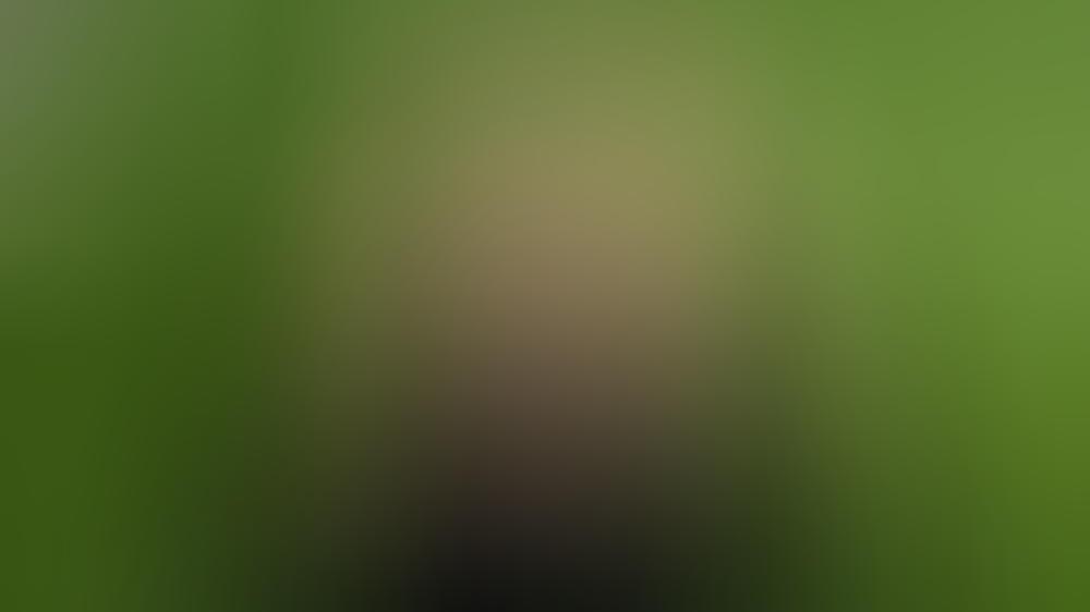 Pamela Anderson 2017 in London