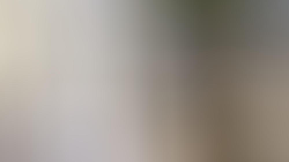 Pastelltöne und durchsichtige Materialien gehören ins Fashionjahr 2021.